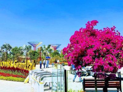 Chợ Xuân Vinhomes Grand Park, Smart City, Ocean Park ngày Tết